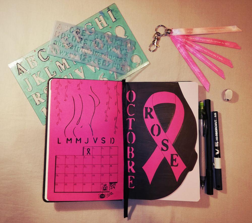 En soutien pour l'association du Ruban rose qui chaque année en Octobre, mène une campagne de lutte contre le cancer du sein.
