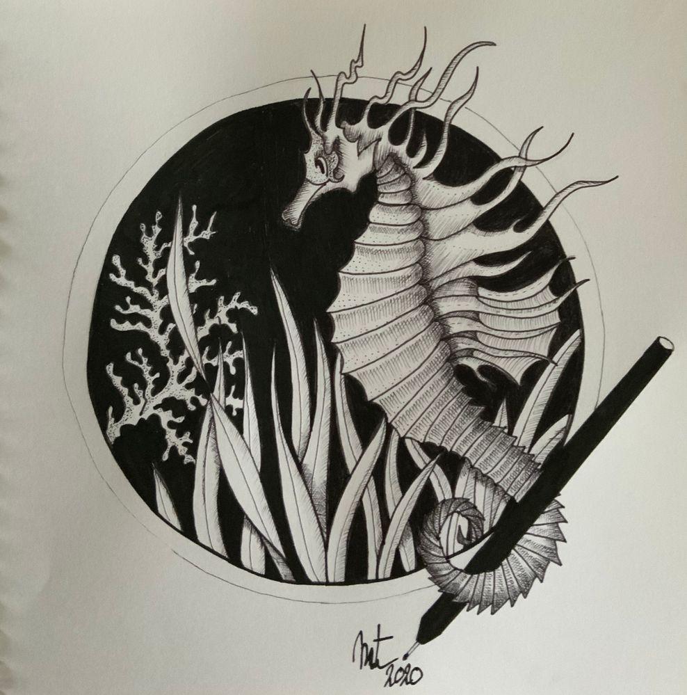 Jour 1 poisson . Oui oui l hippocampe est un genre de poisson !