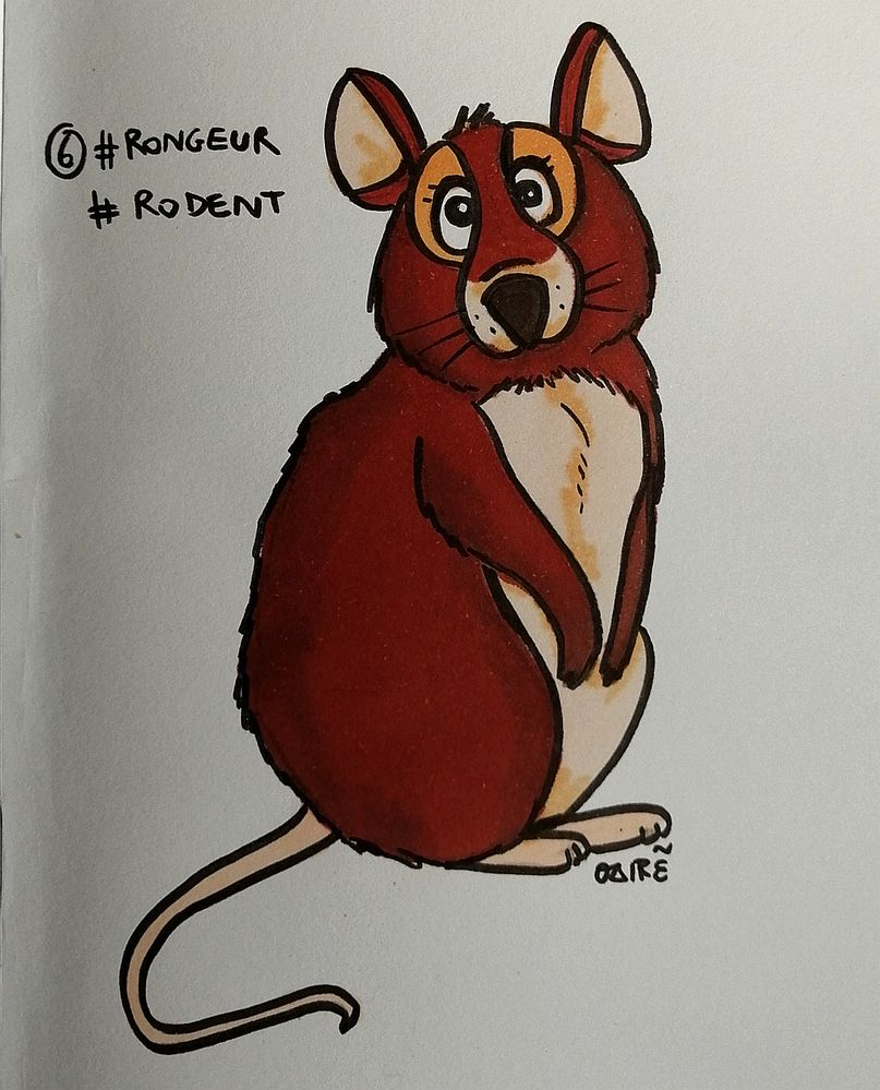 J6 #rodent #rongeur