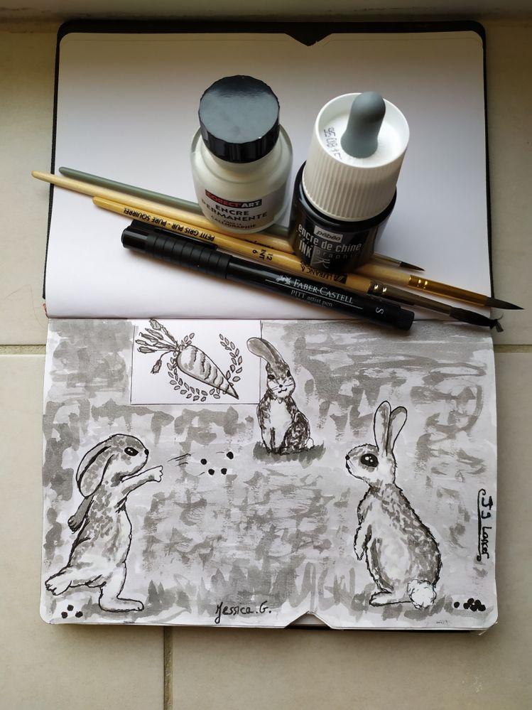 Bonjour, ceci est mon tout premier dessin pour un Inktober. Jour 9 : lancer, jeter. Avec de l'encre de Chine diluée et un feutre fin. Bonne journée.