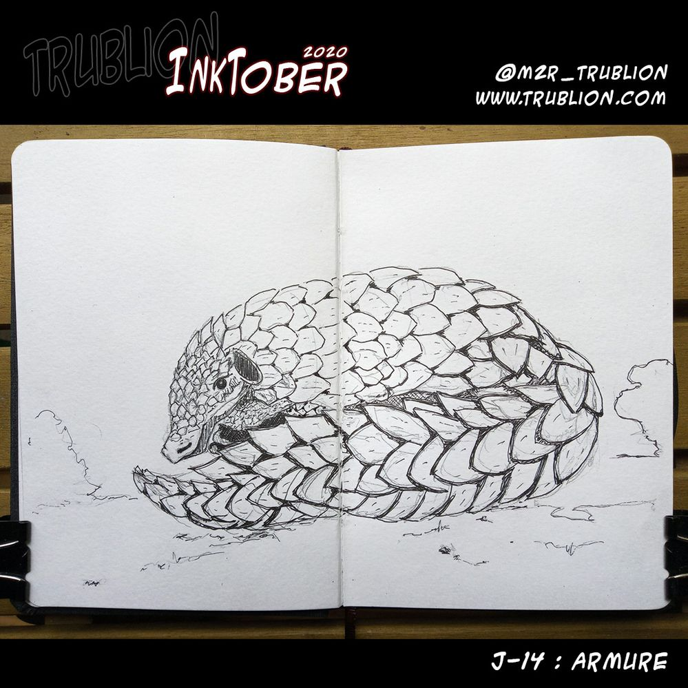 Armure / Armor - Inktober2020