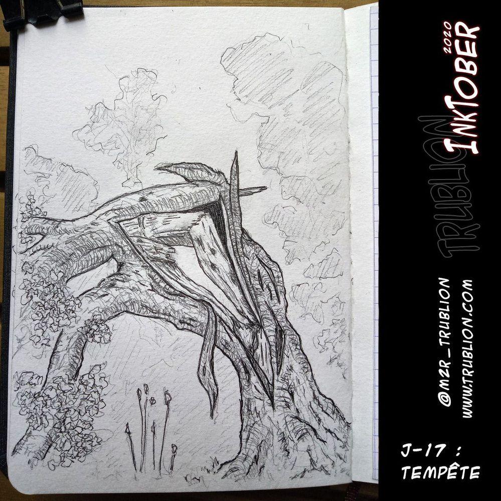 Storm / Tempête - Inktober 2020