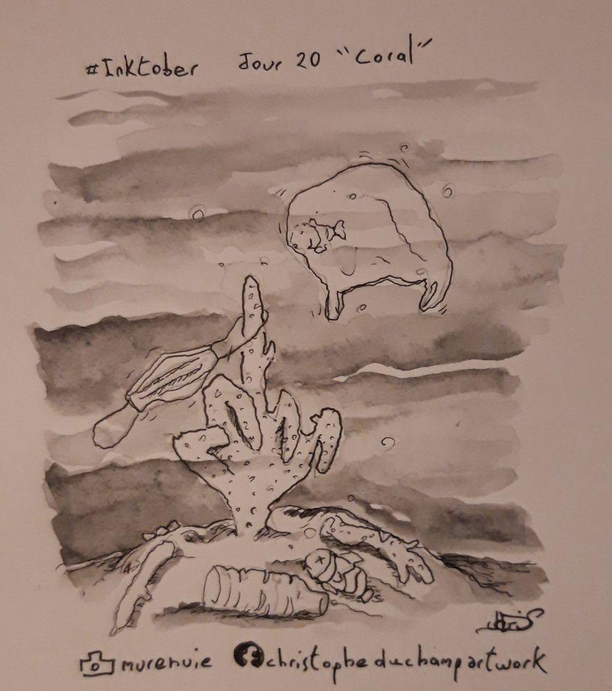 """Jour 20 avec"""" coral """" le peuple de la mer nous lance un message."""