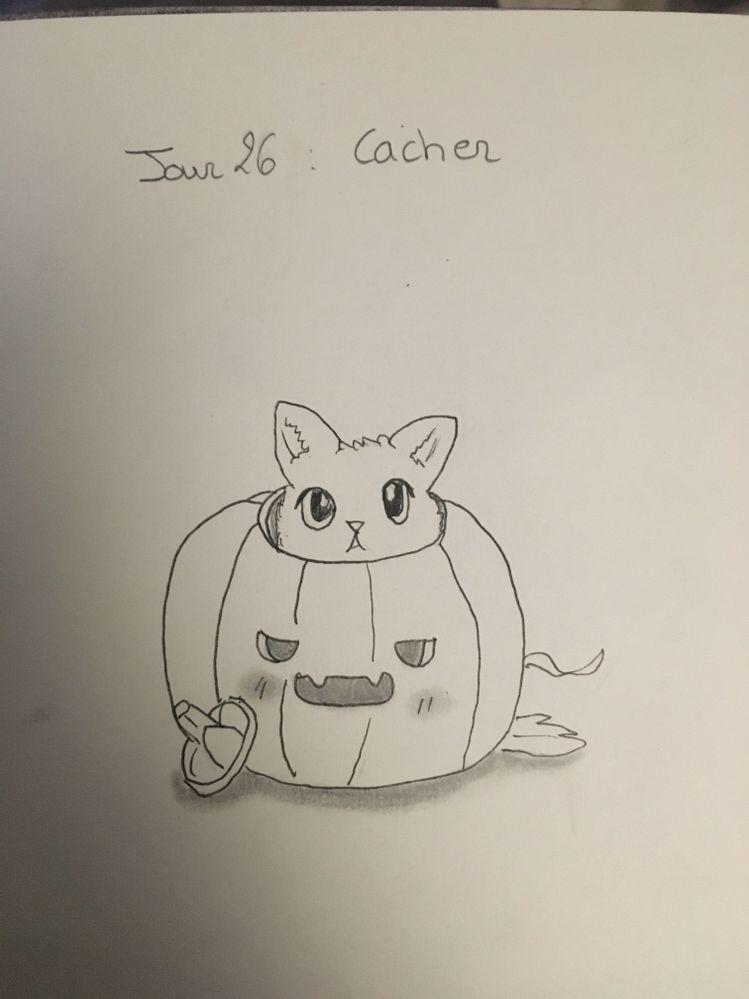 Jour 26 : Cacher