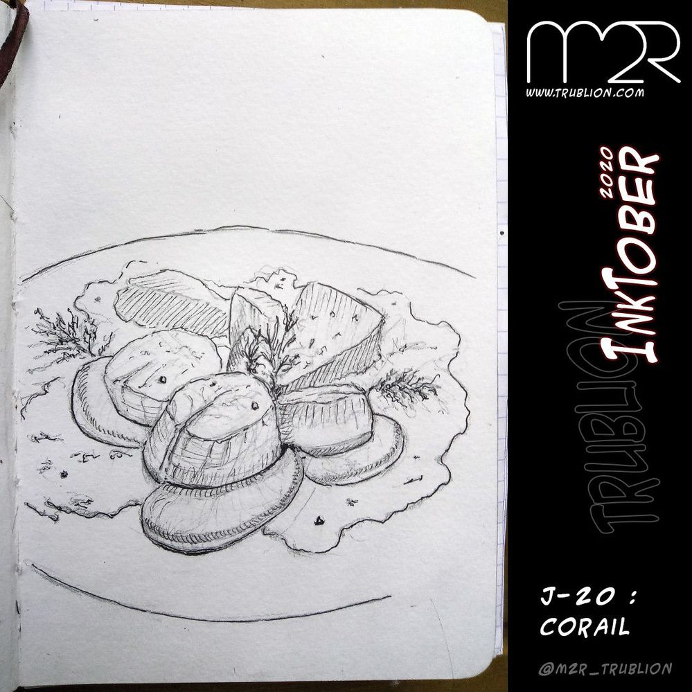 Coral / Corail - Inktober 2020