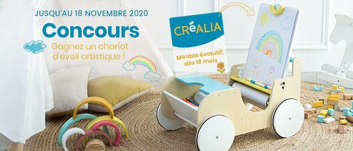 bandeau_page_concours_chariot_culturaCreas.jpg