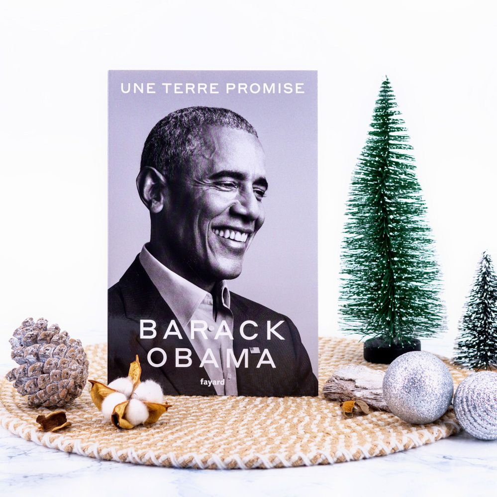 Barack Obama - Une terre promise.jpg