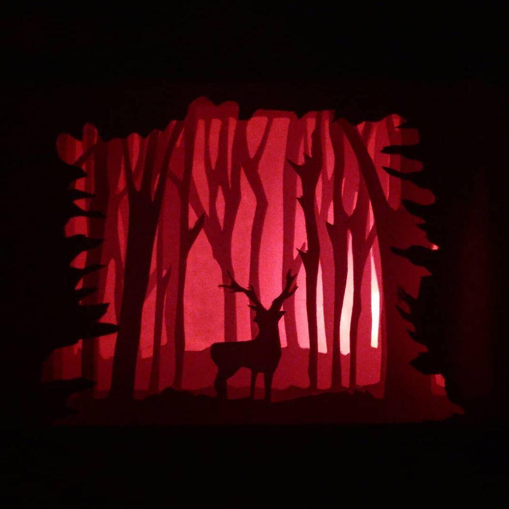 Cerf dans la forêt