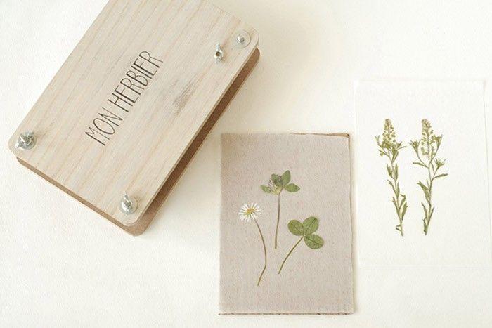ETAPE 4/9 Placer dans la presse. Ajouter les mousses. Fermer la presse. Visser au maximum pour bien écraser les fleurs. Laisser sécher au minimum une semaine et le double de temps pour les fleurs qui sont épaisses. Variante : Faire sécher un bouquet tête en bas pendant plusieurs semaines.
