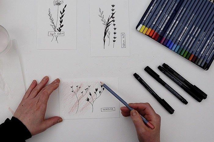 ETAPE 4/9 : CRAYONNAGE DU FOND Colorer aux crayons aquarelle tout le papier sans aller jusqu'aux bords.