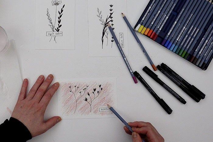 ETAPE 5/9 : NUANCES DES COULEURS  Varier les nuances en forçant le trait de crayon à certains endroits et en mélangeant plusieurs couleurs.