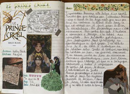 Mon carnet de lecture et mon avis sur Le Prince Cruel