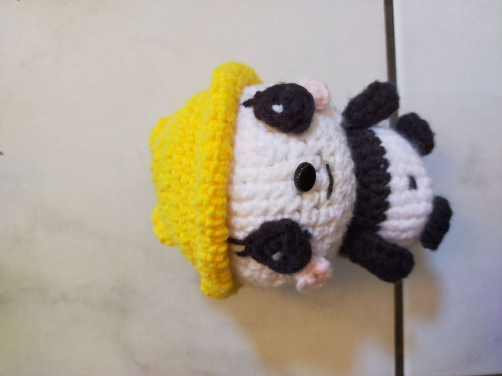 Le petit panda