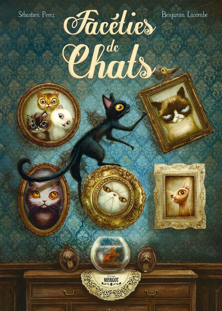 faceties-des-chats-3.jpg