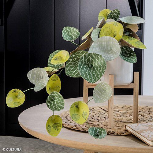 final_plantes_papier.jpg