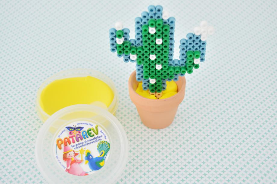 5. Positionner le cactus à l'intérieur d'un petit pot de terre. Entourer le cactus de patarev pour le maintenir.