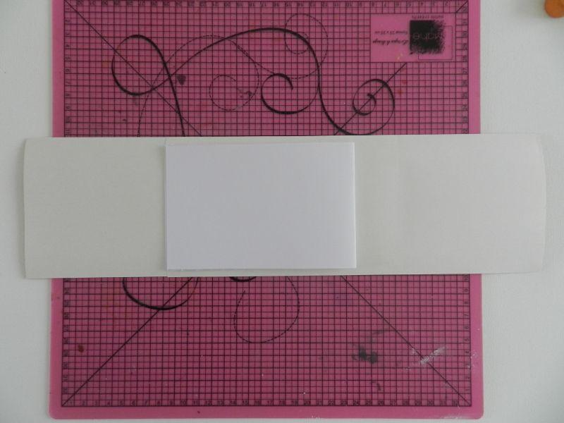 DSCN0105-800.JPG