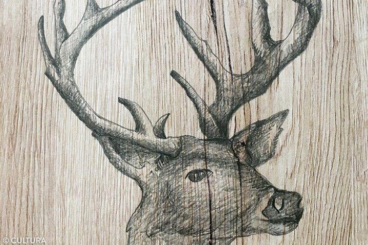 2. Pour apporter davantage d'ombres, colorier par petites touches à l'aide du crayon 6B, la base des bois, l'intérieur des oreilles, l'oeil, la gueule et la base du cou. Utiliser un crayon de couleur marron pour colorier en dessous de l'oeil du cerf et dans l'oreille.