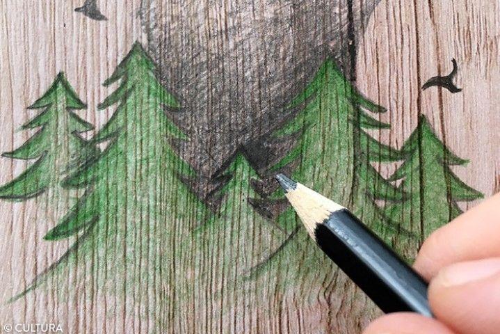 2. Souligner les contours des sapins visibles dans le cou du cerf avec un crayon 6B.