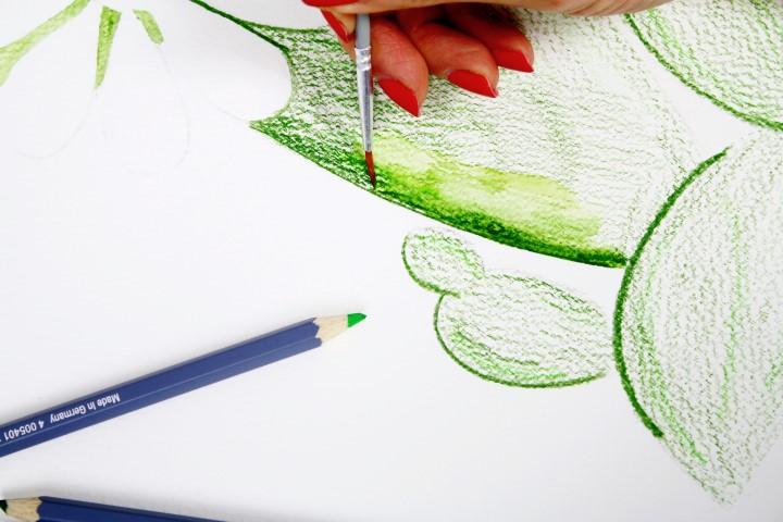 5. Afin de fondre le crayon de couleur en aquarelle, passer de l'eau sur l'ensemble du dessin à l'aide d'un pinceau. Travailler par zone afin que les couleurs différentes comme celles des fleurs par exemple, ne se mélangent pas au corps du cactus. Pour terminer le dessin, une fois que tout est sec, ajouter des petits traits pour les aiguilles de cactus.