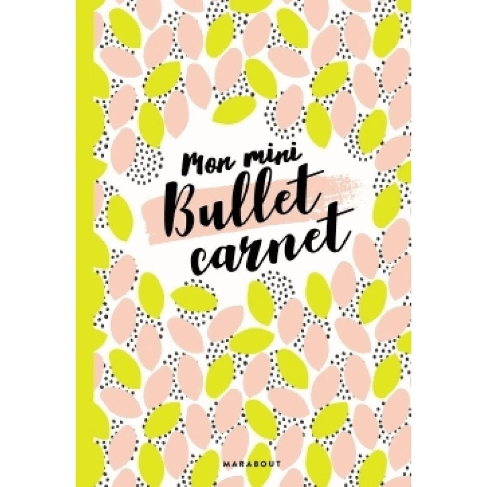 mon-mini-bullet-carnet-9782501125932_0.jpg