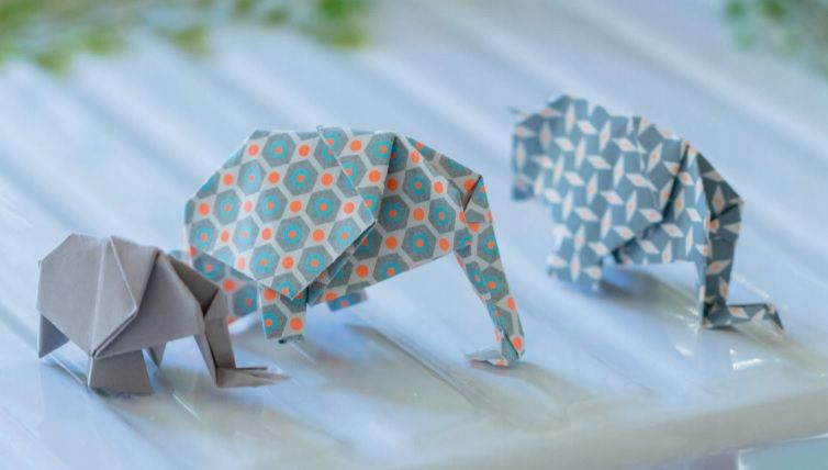 elephantds.jpg
