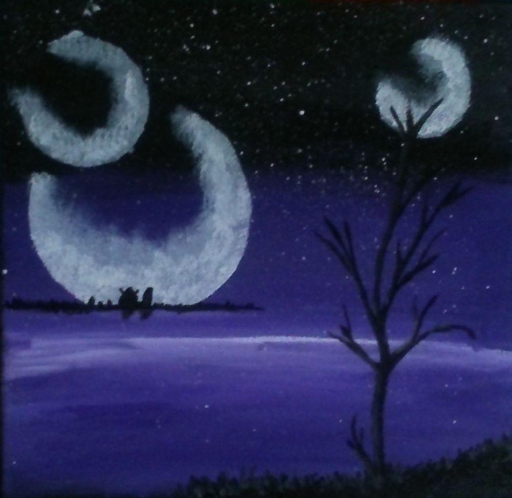 Aux claires des lunes  (3).JPG