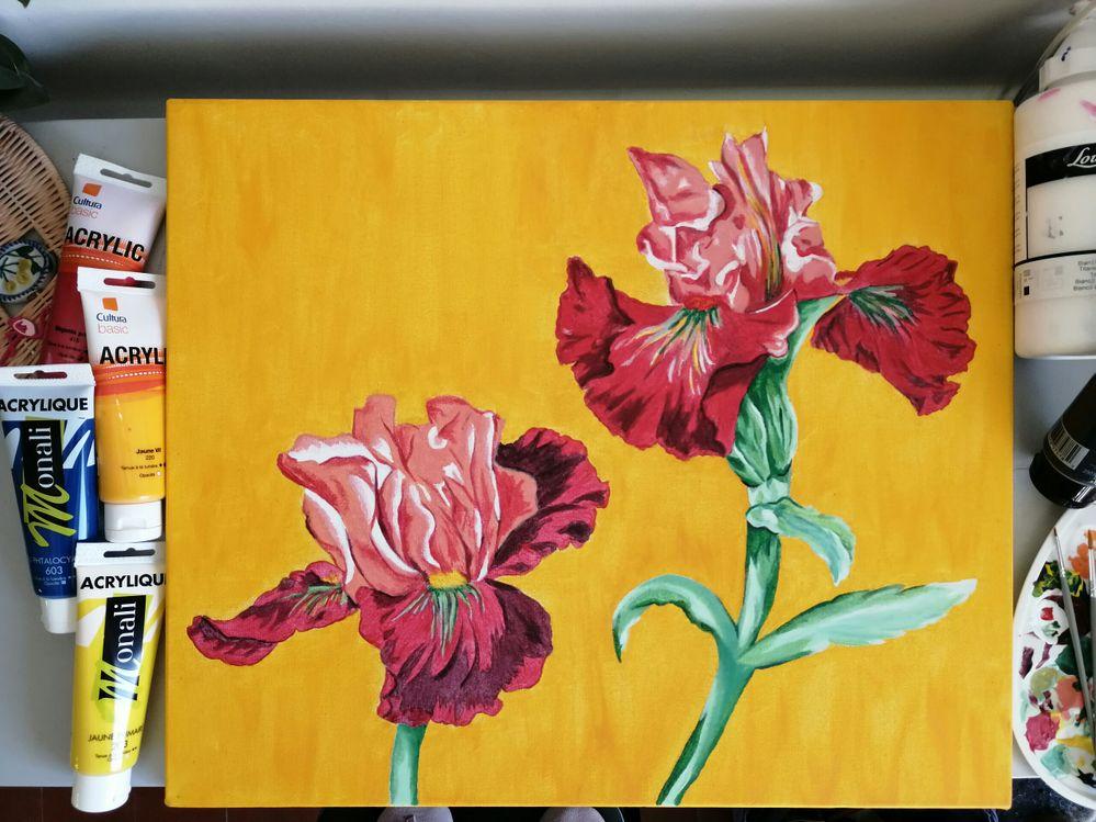 Les iris de Véro