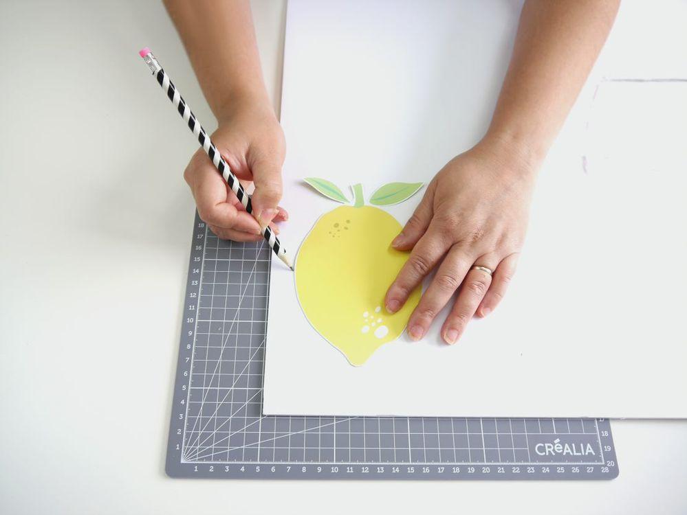 2. Tracer le contour du citron sur du carton mousse.
