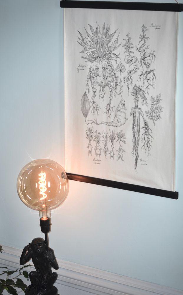 Toile : encre sur tissu représentant une étude des Mandragores d'Harry Potter // Lampe : repeinte en noir à la bombe avec ajout d'une grande ampoule rétro