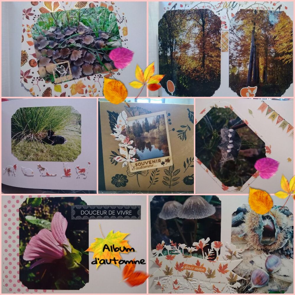 PicsArt_10-07-06.36.28.jpg