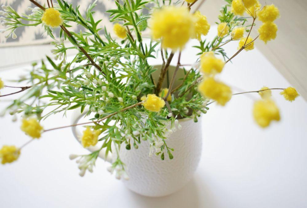 Mimosa_Pompons (7).jpg