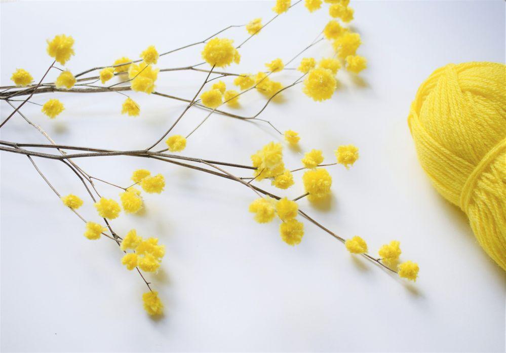 Mimosa_Pompons (14).jpg