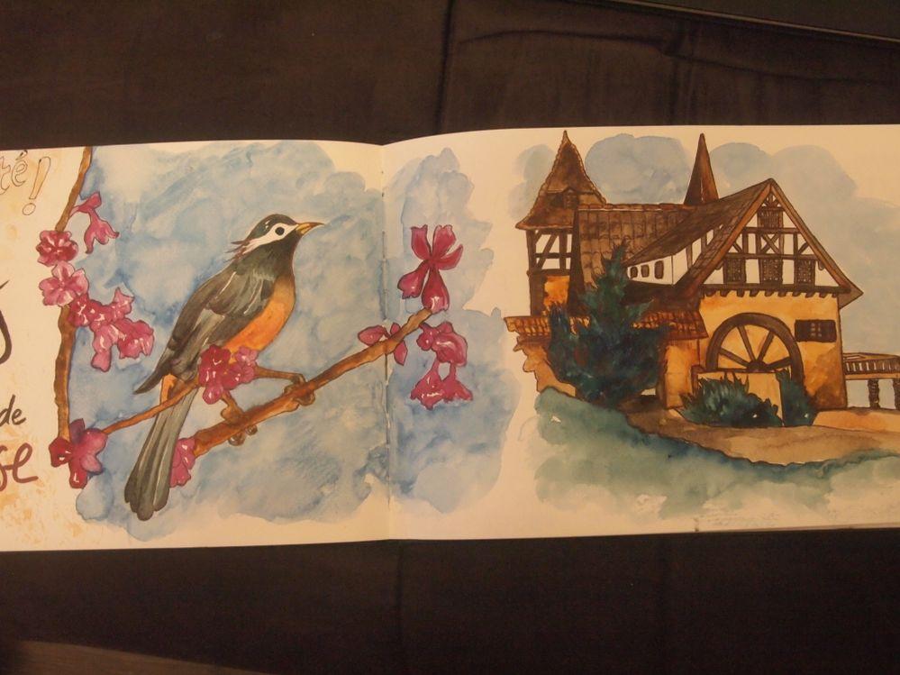 Aquarelle et stylo encre sur papier