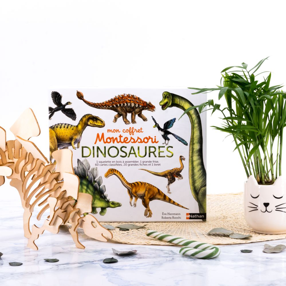 coffret montessori dinosaures.jpg