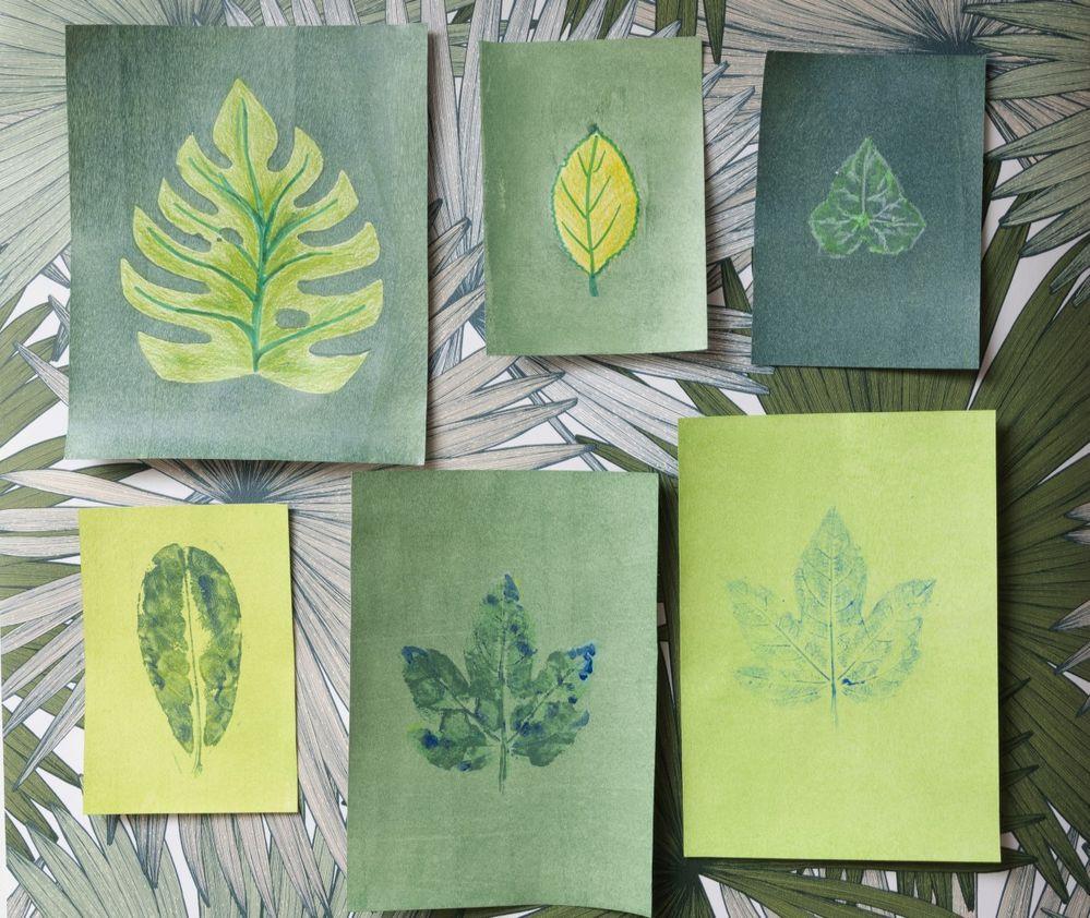 8.Afficher au mur les dessins et peintures pour créer votre herbier créatif.