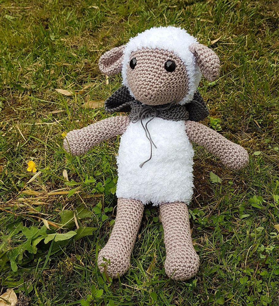 mouton01.jpg
