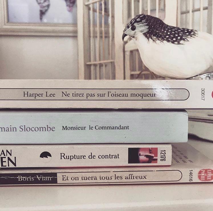 «Ne tirez pas sur l'oiseau moqueur Monsieur le Commandant ! Rupture de contrat; et on tuera tous les affreux!»