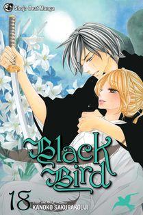 Black bird force epee.jpg